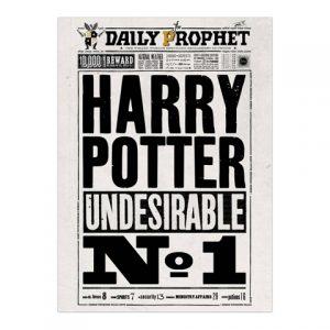 Plagát Denný prorok Harry Potter Undesirable No.1 - Harry Potter