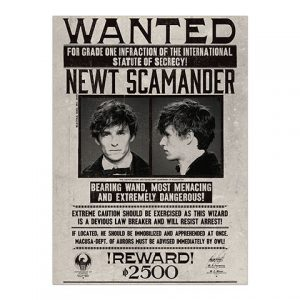 Plagát Newt Scamander - Fantastické zveri